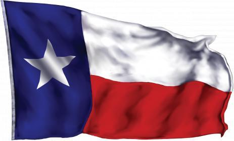Name:  TX_FLAG.jpg Views: 350 Size:  14.2 KB